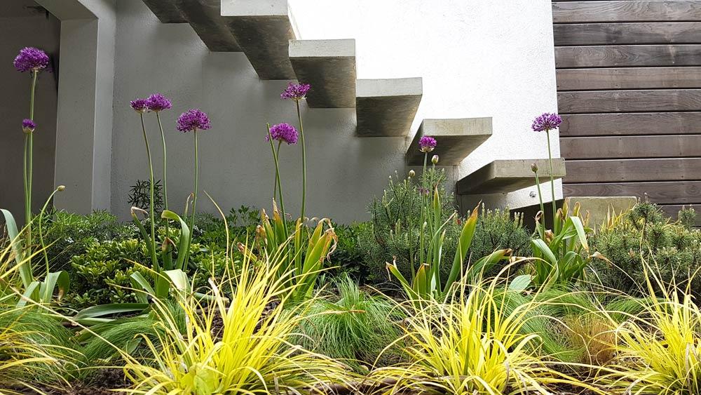Escalier à marchers flottantes dans un jardin contemporain
